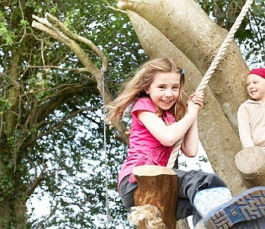 Arrampicarsi sugli alberi fa bene
